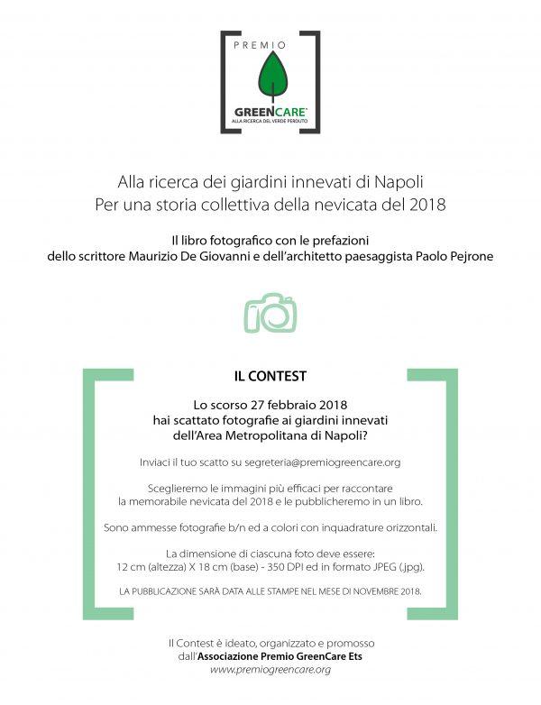 Locandina del contest: I giardini innevati di Napoli