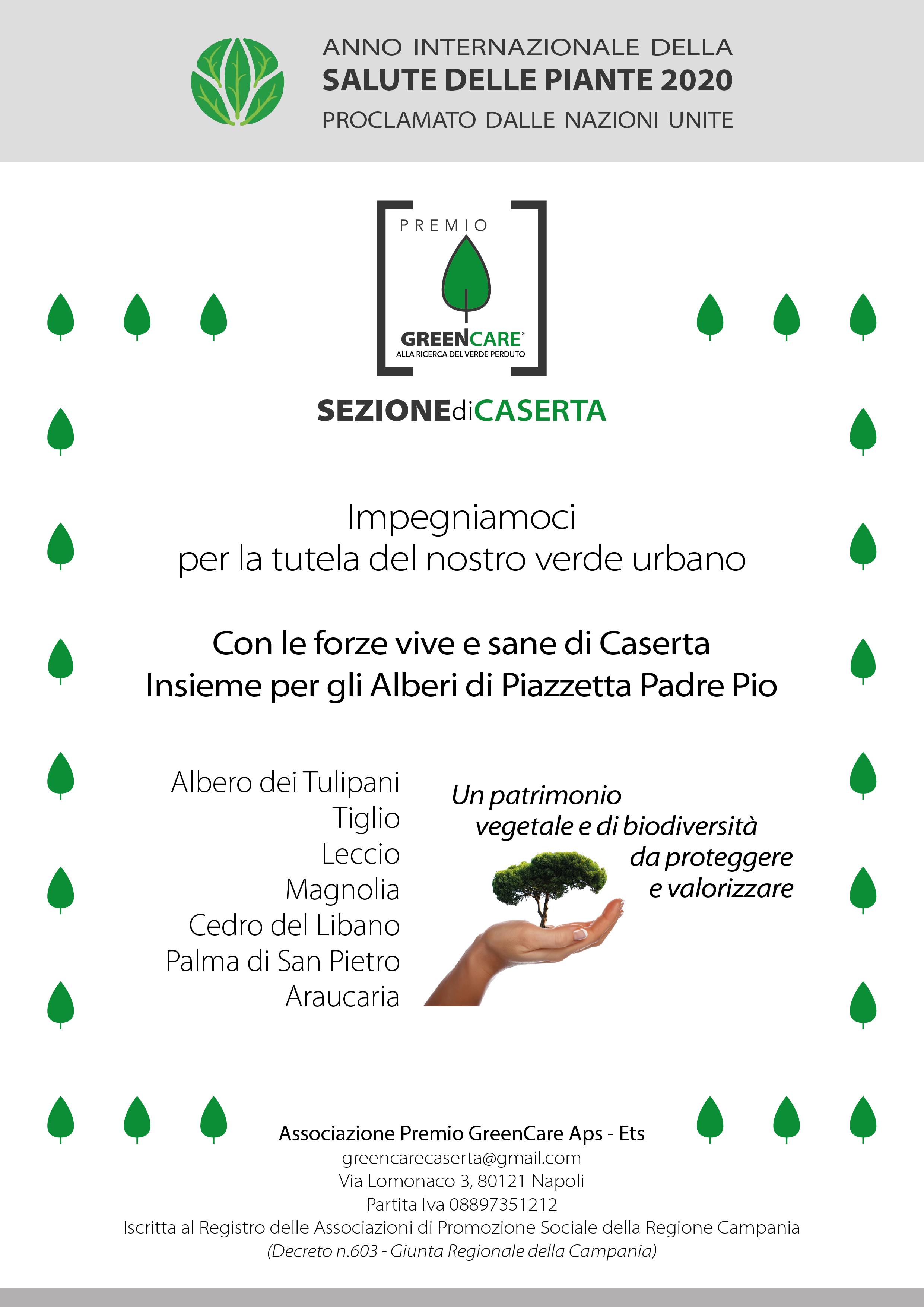Il patrimonio vegetale di Piazzetta Padre Pio