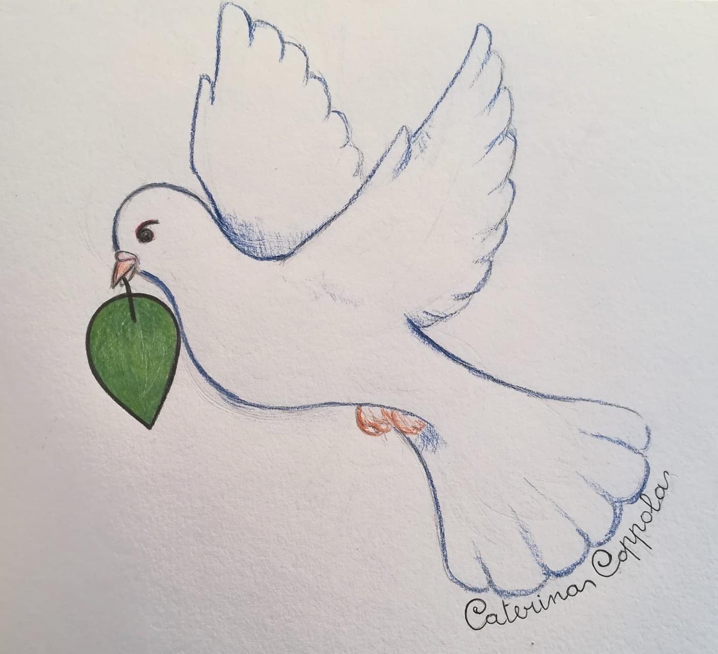 La colomba del Premio GreenCare, disegno originale di Caterina Coppola